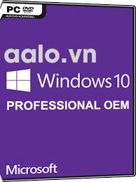 Key Windows 10 Professional English 32/64 Bit OEM 5 PC