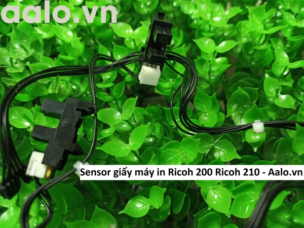 Sensor giấy máy in Ricoh 200 Ricoh 210