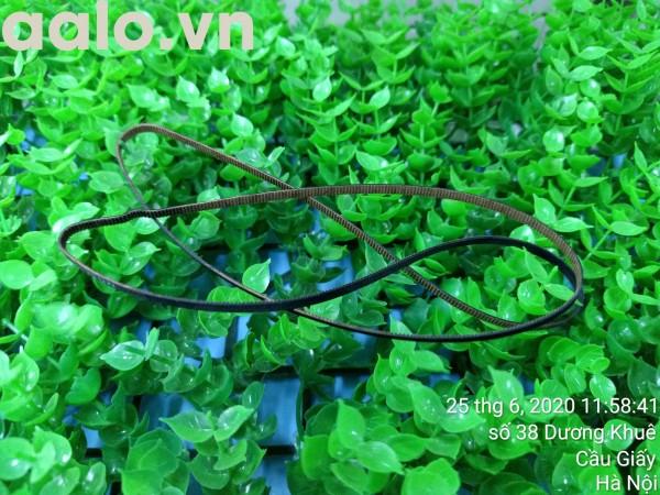 Dây curoa Máy in phun màu Epson L300 L310 L110 - aalo.vn