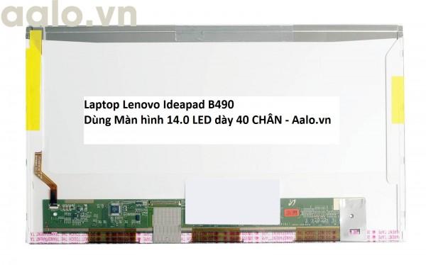 Màn hình Laptop Lenovo Ideapad B490